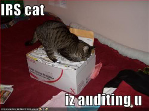 This is what Audit is? - A Funny Story...