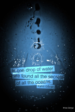 in one drop of water are found all the secrets of all the oceans ...