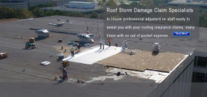 roof-storm-damage-insurance-claims-adjuster.jpg