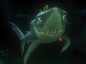 Chum, a mako shark, Bruce's sidekick