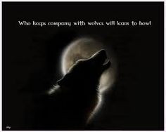 Lone Wolf Quotes About Strength Lone wolf quote - google