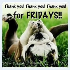 Thank You For Fridays quotes cute quote friday happy friday tgif days ...