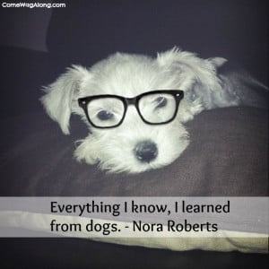 Top 10 Favorite Dog Quotes