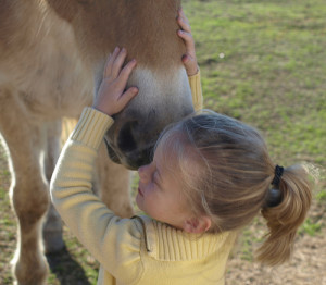 All horses deserve, at least once in their lives, to be loved by ...