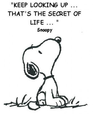 not sure if Snoopy really said this, but I like it anyway.