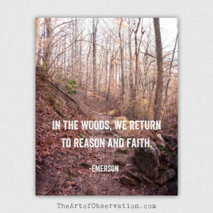 Inspirational Quote Nature Photography by theartofobservation, $22.00