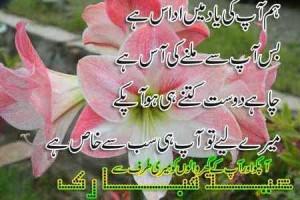 ... Friendship Greeting Cards, Eid-ul-Fitr Friendship Post Cards in Urdu