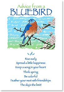 Birthday Card - Birthday Advice From A Bluebird   Your True Nature ...