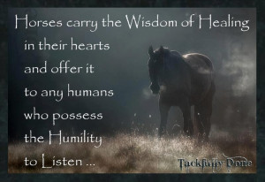 The wisdom of horses
