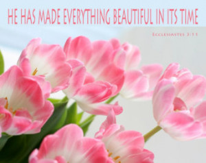 ... with Typography, Bible Quote, He Has Made Everything Beautiful