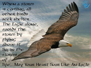 ... alone avoids the storm by flying above it. So in the storms of life