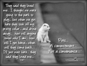 Pets… A Commitment, Not a Convenience!