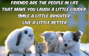 ... People In Life That Make You Laugh A Little Louder ~ Friendship Quote