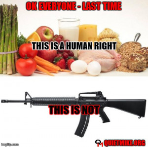 gun control, human rights meme, The Best Memes of September 2013