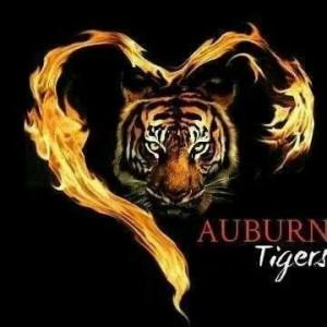 Auburn Tigers...