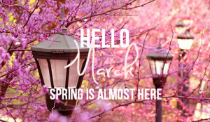 Hello March, Spring is almost here