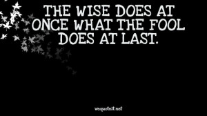 Wise Quotes About Life Experiences: The Wise Does At Once What The ...
