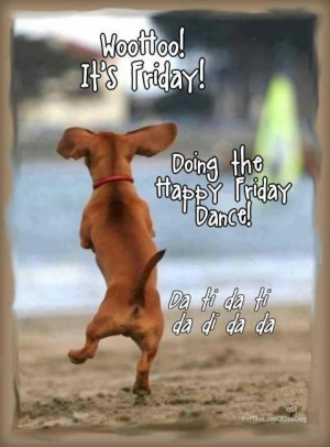 about friday funny friday funny quotes on pinterest its friday