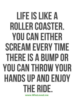 Life is like a roller coaster. It has its ups and downs…but it's ...