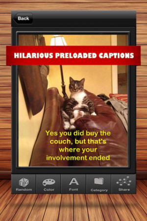 Funny Quotes For Instagram Captions