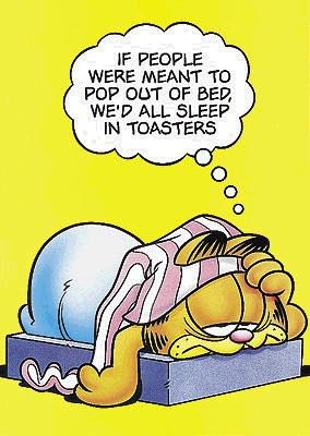 Funny Garfield Pictures