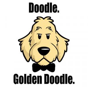 Doodle. Golden Doodle.