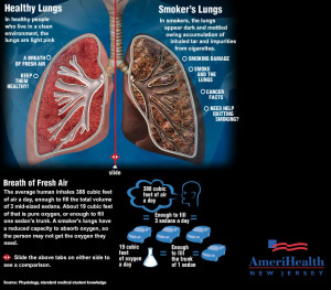 AmeriHealth Interactive Infographic: Healthy Lungs vs Smoker's Lungs