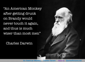 Monkey Quotes And Sayings Quotesgram
