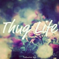 work hard thug lyfe true blood play hard thug life hard play lyfe true