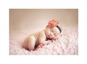 ... blog family baby seniors maternity testimonials contact newborn prices