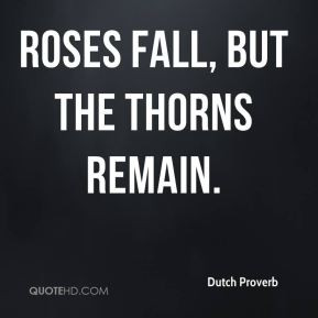 Rose Bush Full Thorns Happy