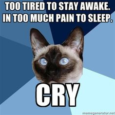 ... Illness Cat - Too tired to stay awake. In too much pain to sleep. Cry