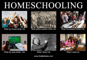 kind of meme, because right after a friend sent me the homeschooling ...