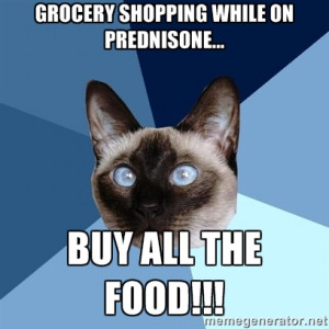 ... Cat - Grocery shopping while on prednisone... Buy all the food