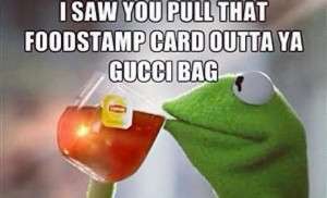 Funny pics: Kermit the Frog's 'That's none of my business'