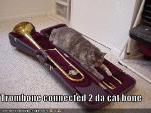 if that picture was a cat playing a trombone it would be perfect