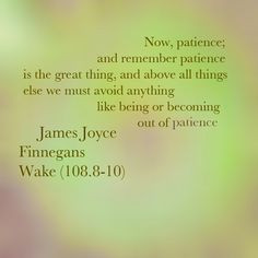 Finnegans Wake James Joyce Quotes | James Joyce - Finnegans Wake (108 ...