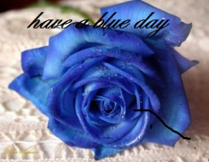 Blue Rose Quotes Blue rose quotes blue rose