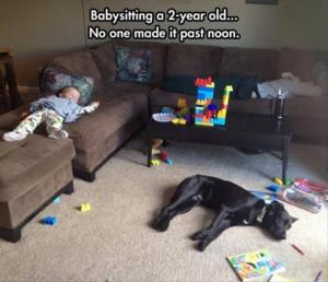 Babysitting a 2 year old