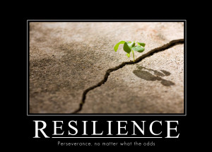Resilience in business