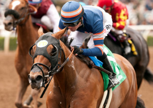 SPRING FEVER STAKES QUOTES