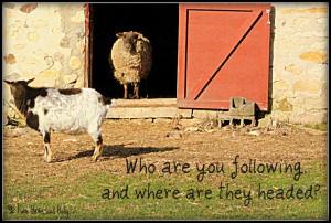 goat quotes