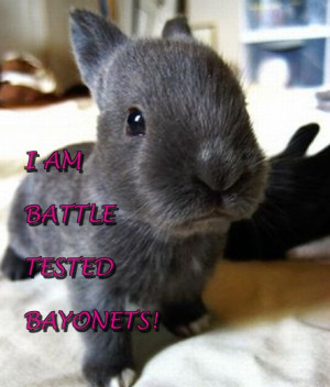Charlie Sheen's Craziest Quotes, Presented by Adorable Bunnies