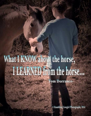 What I know about the horse I learned from the horse
