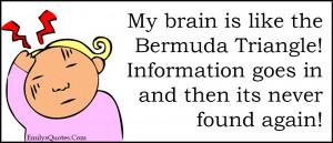 Like My Brain Is the Bermuda Triangle