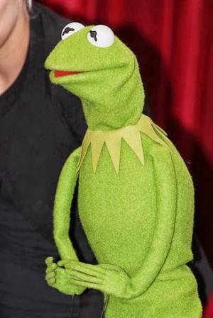 Kermit The Frog Photo Eva