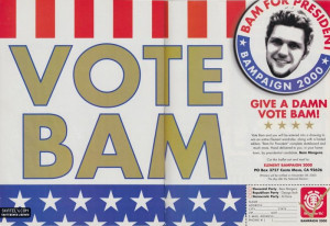 Element Skateboards Vote Bam