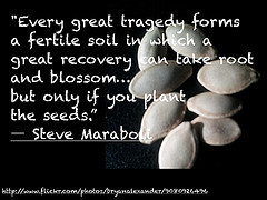 Quote Steve Maraboli Tragedy, Recovery, and Blossom