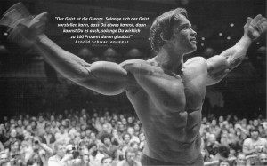 bodybuilding motivation arnold schwarzeneggerBodybuilding Fitness ...
