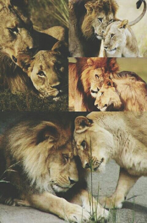 Every king needs his queen.Every King Needs His Queen